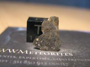 Lunar Meteorite NWA 13715 - Rare lithic clasts (with granulitic texture)
