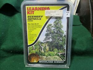WOODLAND SCENIC LEARNING KIT # LK956. SCENERY DETAILS LEARN SIMPLE TECHNIQUES T