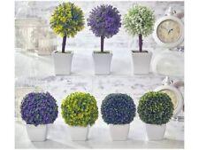 Boxwood Topiaries Flowers