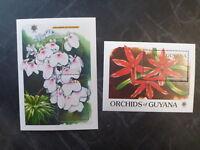 1990 GUYANA ORCHIDS OF GUYANA PAIR OF MINI SHEETS MNH #1