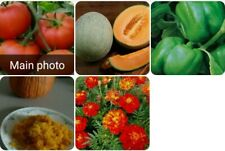 5 Heirloom variety 50+seeds tomatoes, cantaloupe, peppers, pumpkins, & marigolds