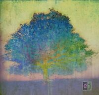 Eric Johnson - EJ [CD]