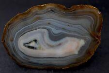 Black River agate collector specimen