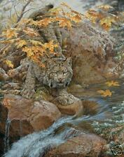First Fall Lynx by Lee Kromschroeder LE Print NEW! Cat Like Bateman Brenders