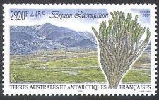 FSAT/TAAF 2001 Byrum laevigatum/Plants/Mosses/Nature/Conservation 1v (n30226)