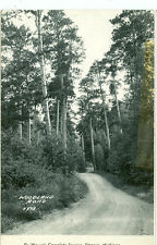 STRONGS,MICHIGAN-DEWEESE'S COMPLETE SERVICE-WOODLAND RD-1950-RPPC(RP#1-1422)