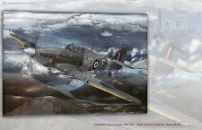 Aviation Art Canvas print Hawker Hurricane Mk IIC 309 SQ