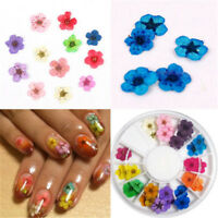 12 Colors DIY Real Dried Flowers Nail Art Tips Decoration Decor Manicure Wheel