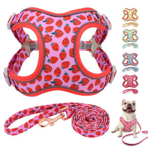 Cute Fruit Reflective Dog Harness and Lead Soft Mesh Walk Vest Small Large Dogs