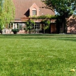 Cheap Artificial Grass Clearance | 6mm to 40mm Thick Soft Luxury Realistic Turf