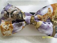 Absolutely adorable Cat, Cats, Kitten, Kittens, cat lover pre-tied men's bow tie