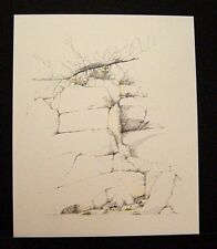 "Peter Parnall Limited Edition Signed Print ""Marsh Harbor Coons"""