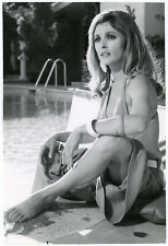 Tragic Beautiful Blonde Sharon Tate Original 1967 Valley of the Dolls Photograph