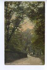 (w15h75-357) Esholt Springs, Nr. BRADFORD  1907 Used VG