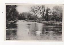 The River Alresford 1960 RP Postcard 900a