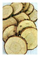 15 Stück *  9-12 cm * Astscheiben Baumscheiben Holzscheiben, Holz, basteln Kunst