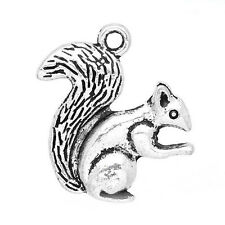 8 Squirrel Animal Tree Fur Antique Silver Charms Pendant 20mm x 21mm (143)