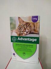 ADVANTAGE 40/ 80 bte 4 pipettes anti puces chat/Cat  de 1 à 8 kg Fleas treatment