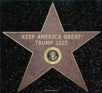 "President Donald Trump 2020 Keep America Great! Hollywood Star Sticker 5.5""x6"""