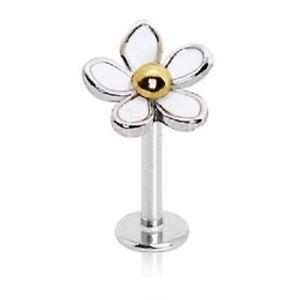 Stunning DAISY Flower Tragus 8mm Helix Bar Cartilage Upper Ear Piercing Earring