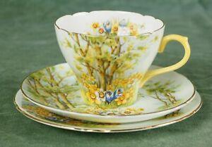 Vintage Shelley China Porcelain Tea Cup Trio Daffodil Lime 13370
