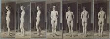 Laura Nackte Frau Maske Akt Körper Hintern Po Brüste Profil Stehend Photo M 186