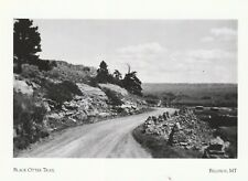 """+Pc-Montana-Postcard-&#03 4;The Black Otter Trail"""" /Scenic Road View/ (A27-1)"""