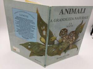 Kenneth Lilly ANIMALI A GRANDEZZA NATURALE  LA NOTTE