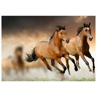 5D DIY Full Drill Diamond Painting Horse Running Cross Stitch Embroidery #G