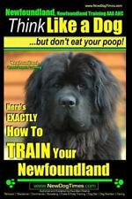 Newfoundland, Newfoundland Training Aaa Akc: Here's Exactly How to Train Your.