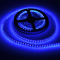 BLUE 12V 5M 3528 Led SMD 300 Lights Flexible Strip Light DC 12V - USA SHIPPID