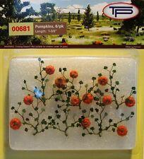 Tasma 00681 - Pumpkins 6 Pack - OO Gauge - 1st Class