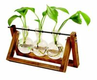 Indoor Plant Propagation Station Tabletop Three Plant Vases grow cuttings