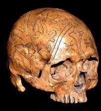 Dayak Skull Replica