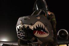 A-10 Thunderbolt Nase Kunst 12x18 Silber Halogen Fotodruck