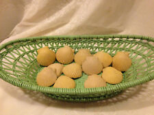 Vintage Sea Shell Guest Soap Set of 12 NOS
