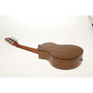 Ibanez EWP Series EWP14 Acoustic Guitar - Open Pore Natural SKU#1401531