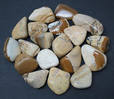 1/2 lb Bulk Lot Picture Jasper Tumbled Stones (Crystal Healing) 8 oz