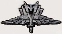 Starship Troopers MI Mobile Infantry Wings Embroidered Patch w/male HOOK Backing