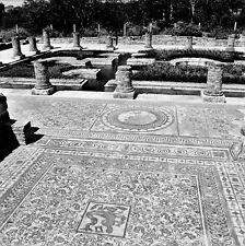 PORTUGAL c. 1960 - Mosaïques Conimbriga - Négatif 6 x 6 - Por 241