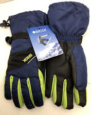 Brisk Ski Gloves Adult Medium
