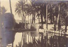 Algérie Vintage Argentique Photo Geiser