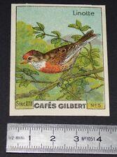 CHROMO 1936 CAFES GILBERT OISEAUX BIRDS LINOTTE