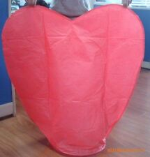 Chinese Flying Sky Lanterns Birthday Wedding Party Celebrations Anniversary 10