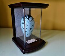 More details for replica bird's egg - great auk's egg in museum-style case by tony ladd
