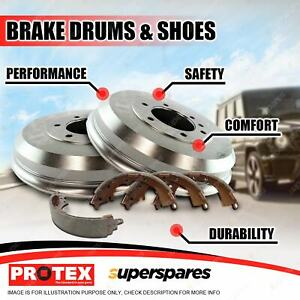 Protex Rear Brake Drums + Shoes for Holden Colorado RG 2WD 4WD 11-on