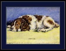 English Picture Print Springer Spaniel Dog Art