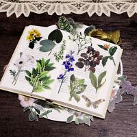 50x Vellum Self-adhesive Sticker Blume Pflanzen Abbildung Scrapbooking DIY Decor