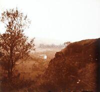 Francia Paesaggio Alberi Foto Stereo PL58L4n5 Placca Da Lente c1920