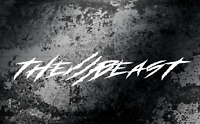 The Beast Claw Scratch Stripe Windshield Banner Decal Sticker STYLE #2